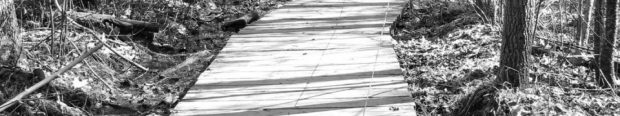 cropped-cropped-rowen-bridge.jpg